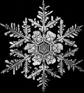 snowflake1-271x300